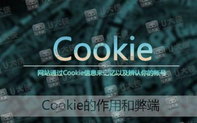 cookie 的作用和弊端